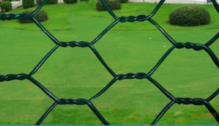 Twisted Hexagonal Wire Netting for Poultry Fencing